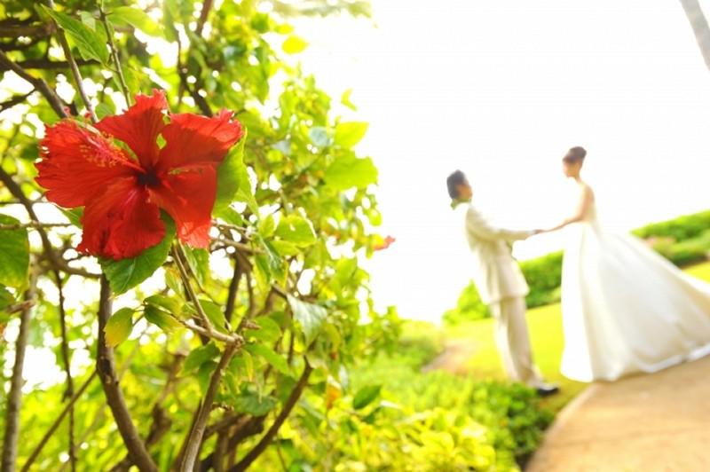 マイナビウェディングで結婚式場を選ぶ まとめ